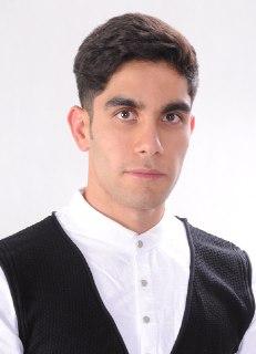 Mr Hossein Golestaneh